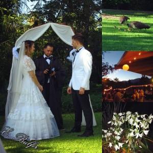 K&J Wedding Collage