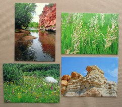 westernscenery postcardgroup (6)