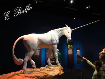 020 unicorn