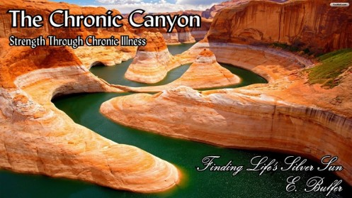 chronic canyon