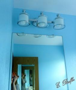 powder room walls