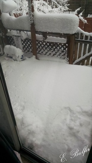 It's done snowing, mostly, and there isn't much of a step down anymore. Normally, you walk out of my sliding glass door and the porch is about two feet below... The snow is currently over the height of the metal frame on the door.