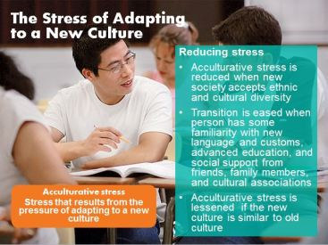 acculturative stress slide