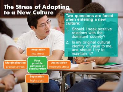 acculturative stress slide2