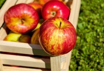 apple-1589874_1920