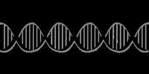 biology-2024773_1280