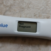 Negative Pregnancy Test